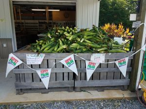salem county farm market corn