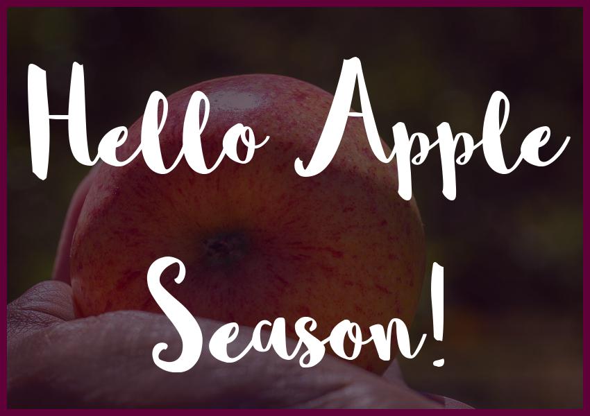 apple-season-in-salem-county-nj-apples