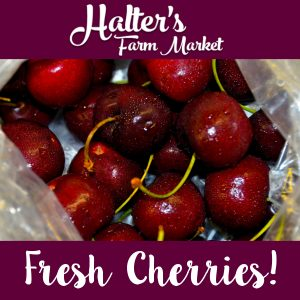salem-county-cherries
