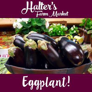 salem-county-eggplant
