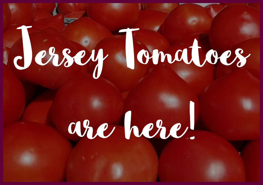jersey-tomatoes-are-here